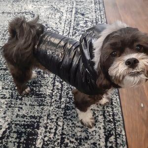2/$25🎉 NWOT Small Dog Puffer Jacket w Fur Hood